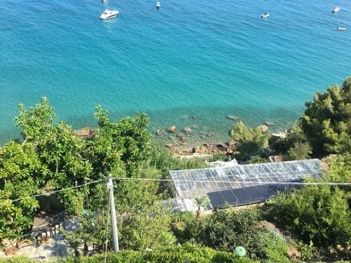 Квартиры у моря в Лигурии - tranioru